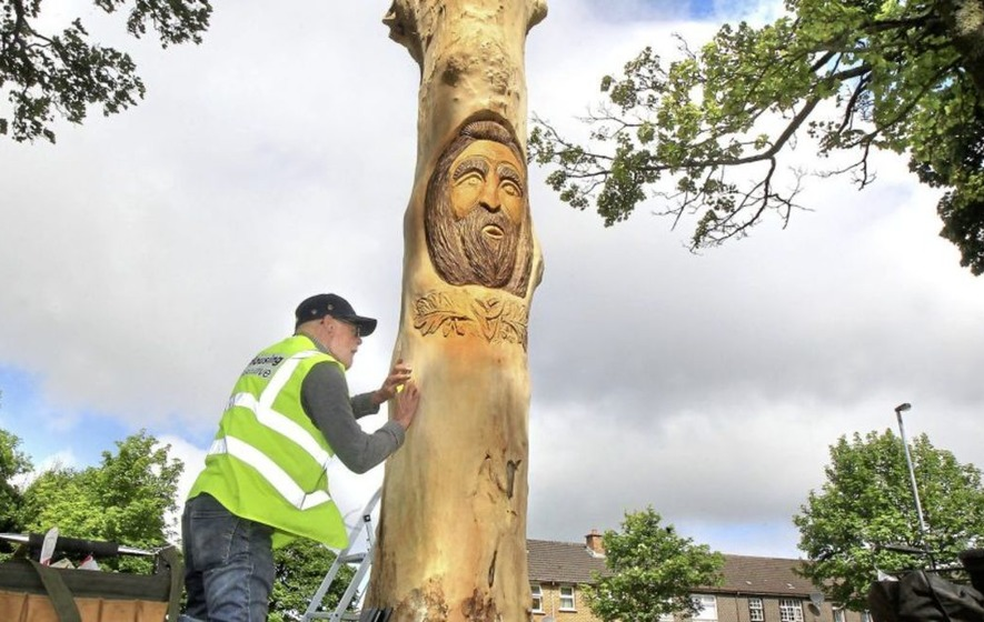 Dying trees transformed with celtic carvings in derry the irish news