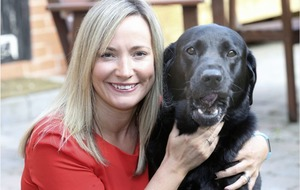 It's a dog life: Co Down hotel does haute cuisine for canines