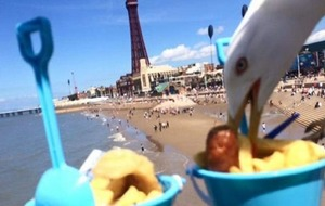 That awkward moment when you're trying to take a picture of your food and a seagull swoops in