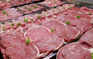 Northern Ireland's beef exporters now free to trade at lowest level of BSE risk