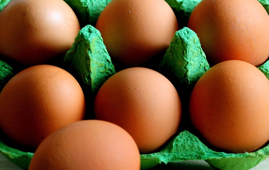 Two Suspects Detained in Dutch Eggs Investigation