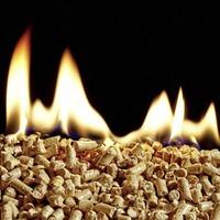 RHI scandal: Inspections of boilers to begin next week