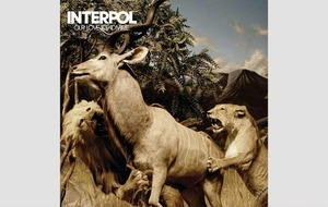 Album Reviews: Our Love To Admire Interpol's crowning achievement