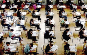 13 students score at least 90 per cent in eight of their Leaving Cert classes