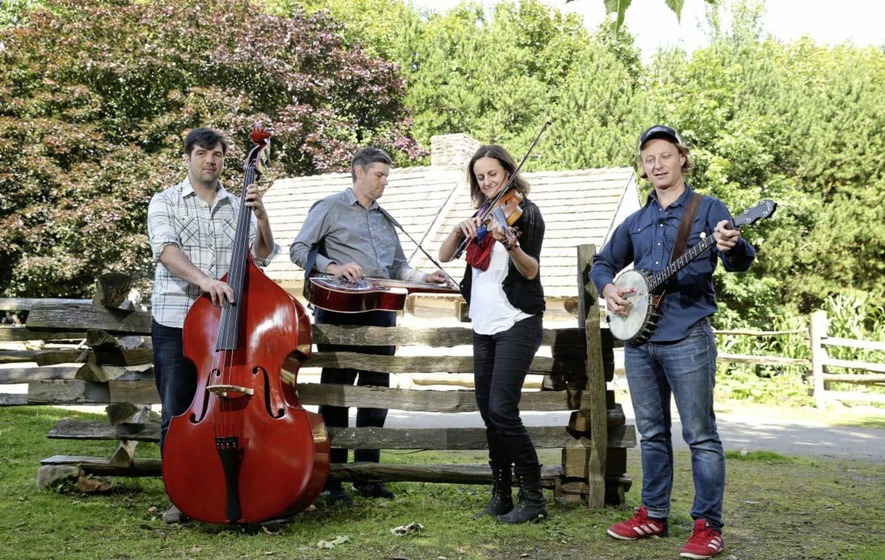 Image result for viper central bluegrass band