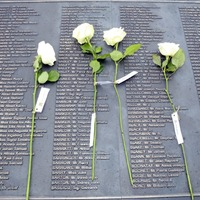 Newton Emerson: If politicians can't agree a Troubles memorial, someone else should build it