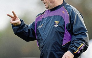Seamus McEnaney cites commute after stepping down as Wexford manager