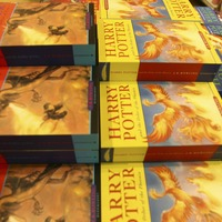 This new-edition Harry Potter book brings characters and adventures to life on the page
