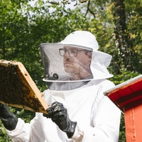 Three-quarters of the world's honey contains pesticides, new research has found