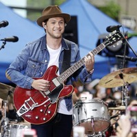 Westmeath singer Niall Horan listed among richest 'British' celebrities