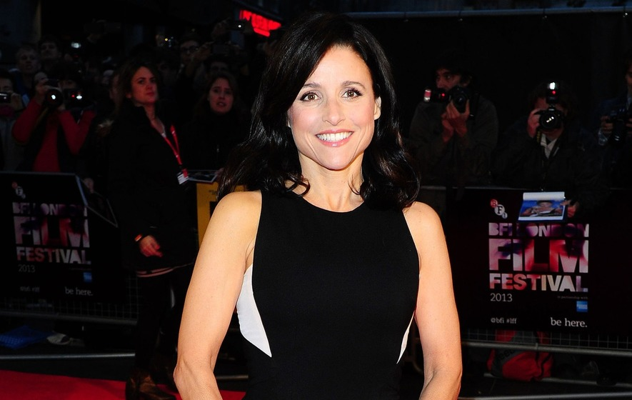 Julia Louis-Dreyfus shares photo after finishing second round of chemo