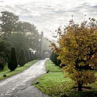 Outdoors: Five autumn garden walks