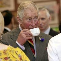 Unionist anger as Derry Sinn Féin mayor refuses to meet Prince Charles