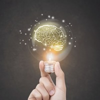 Turns out the human brain isn't as unique as we'd like to think