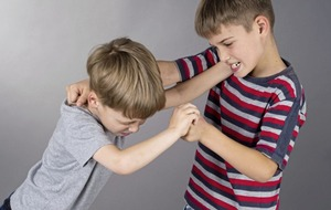 Ask The Expert: How do I stop my two sons from fighting with each other?