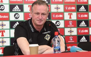 "Motherwell boss Stephen Robinson says it would be ""massive honour"" to manage Northern Ireland if SFA appoint Michael O'Neill"