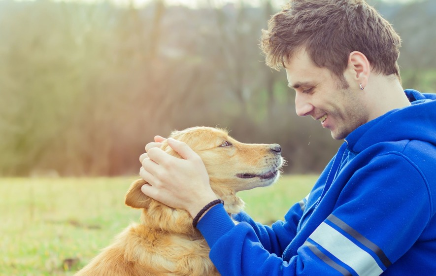 Dog owners have lower mortality, study finds