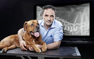 Just announced: Supervet Noel Fitzpatrick's Welcome to My World in Dublin and Belfast