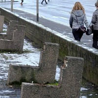 Council to review park bench removal