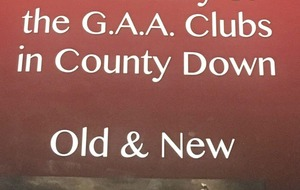 'The History of the GAA Clubs in County Down, Old and New' is compiled with tender loving care and worthy of its subject