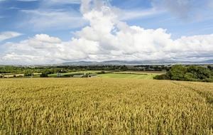 105-acre arable and livestock farm in Eglinton on sale for £1.15m