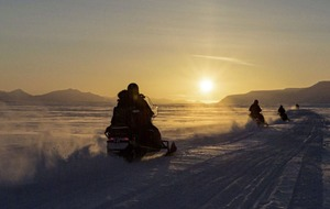 Travel: Bears, lights and action – a snowmobile safari is the ultimate arctic adventure