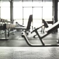 John McEntee: Dublin's gym fiasco won't alter thoroughbred focus