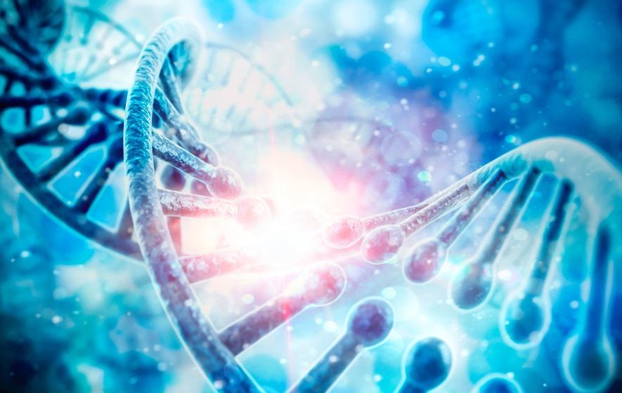 scientific breakthroughs might change biggest genes scientists determine identify facial features science irishnews example