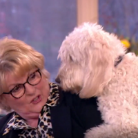 Watch: Eamonn and Ruth in fits of laughter as Brenda Blethyn is mounted by her dog