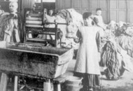 Stormont officials commission research on Magdalene laundries in the north