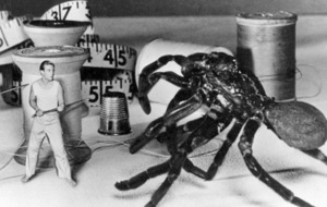 Cult Movie: The Incredible Shrinking Man a pocket-sized sci-fi classic