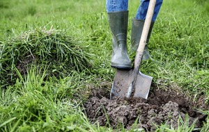 The Casual Gardener: Don't dig your way to an injury with poor spademanship
