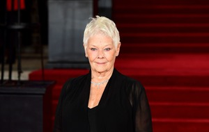Toast of Hollywood? Dame Judi Dench nominated for 'leading roll' at SAGs