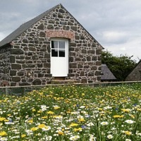 Natural heritage projects in Northern Ireland receive lottery boost