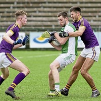 Fermanagh beat Wexford in scrappy Brewster Park encounter