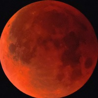 All the most spectacular images as a super blue blood moon graces the sky