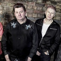 Just announced: Stiff Little Fingers, Damned & Buzzcocks for Belfast