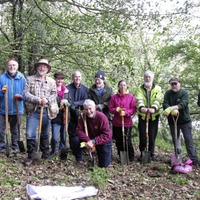 Belfast Hills Partnership seek tree & hedge planting volunteers