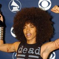 Soul star Erykah Badu to headline Field Day festival