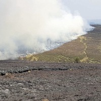 New consultation launched on how best to reduce the threat of wildfires in NI