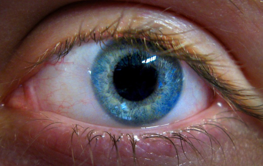 Google's Retinal Scan Will Detect Your Risk of Heart Disease