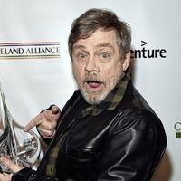 Actors with Irish links honoured at Oscar Wilde Awards
