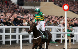 Summerville Boy can reign Supreme today at Cheltenham says Noel Fehily