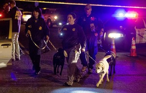 Explosions in Texas: 'Serial bomber' suspected in Austin blasts