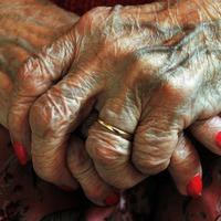 Genes discovery opens door to osteoarthritis treatment