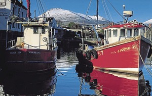 Annalong harbour at risk due to under investment, campaigners claim