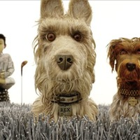 Film: Isle Of Dogs latest self-consciously offbeat buddy comedy from Wes Anderson