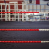 What's it like to be a sparring partner?