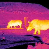 Out-of-this-world thermal imaging aimed at poachers