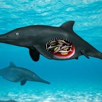 Yorkshire Ichthyosaur fossil was pregnant mum